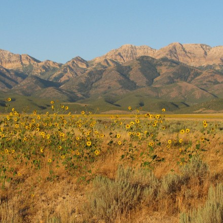25 Oquirrh Mountains, UT